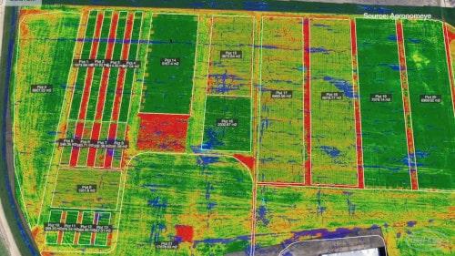 Cómo la agricultura inteligente está haciendo evolucionar el sector agrícola